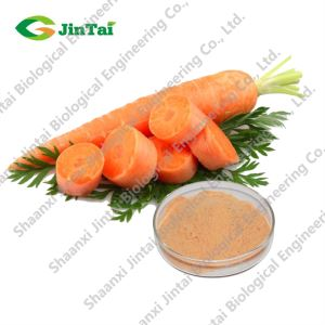 Organic vegetable powder dried carrot powder
